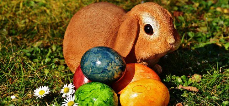 Non è Pasqua, senza la Colomba di Pavullo