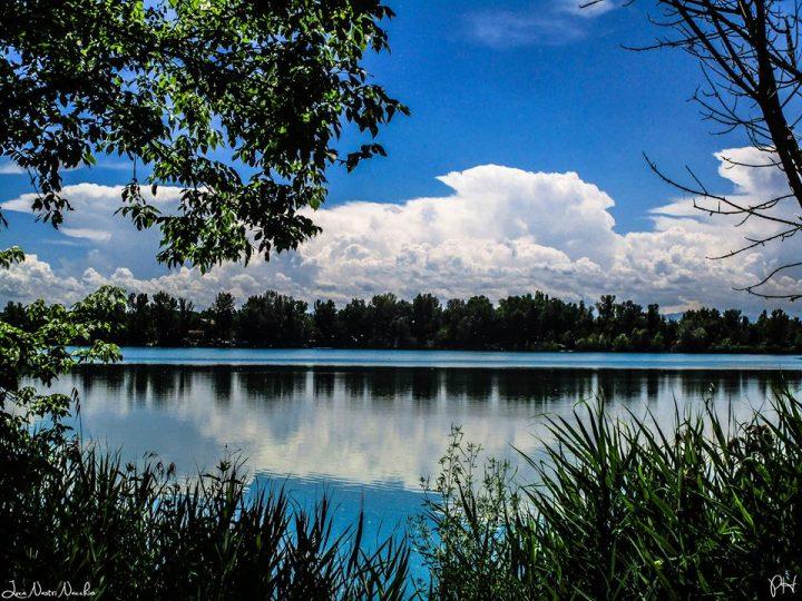 Laghi Curiel di Campogalliano - Foto Luca Nacchio